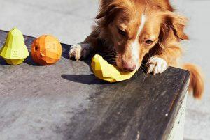 Juguete súper fruits de Zee Dog